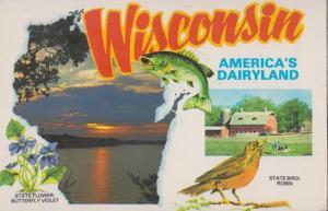 Wisconsin Americas Dairyland Postcard