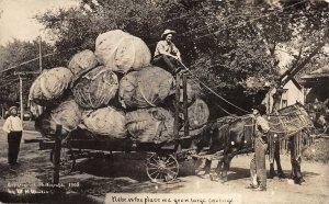 G32/ Milburn Nebraska RPPC Postcard 1911 Exaggeration Cabbage Wagon