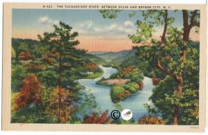The Tuckaseigee River Between Sylva and Bryson City North Carolina Old Postcard