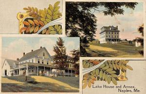 Naples Maine Lake House And Annex Multiview Antique Postcard K13313