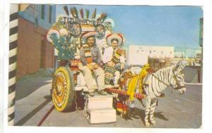 Two men posing for picture on colorful Zebra-striped Donkey Cart, Tijuana, Ba...