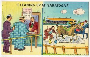 Cleaning Up, Saratoga NY