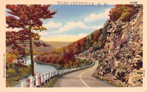 Catskill Mountains Margaretville, New York Postcard