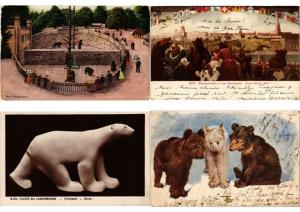OURS BEAR BEARS ANIMAUX 21 CPA + 5 TRADE CARDS