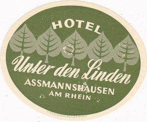 Germany Assmannshausen Hotel Unter Den Linden Vintage Luggage Label sk3060