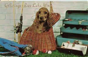 Postcard Greetings Rice Lake Wisconsin