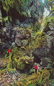 Canada Preacher's Pulpit and Fern Cavern Blue Mountain Scenic Caves Collingwo...