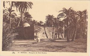 BISKRA, Algeria, Africa, 1910-1920s; Mosquee De Sidi Brahim