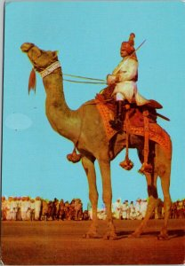 India Camel Ride Man with Sword Postcard C7 *as is