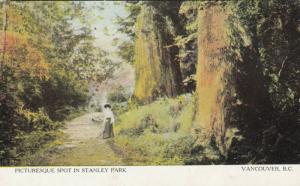 VANCOUVER , B.C. , 1911 ; Picturesque Spot in Stanley Park