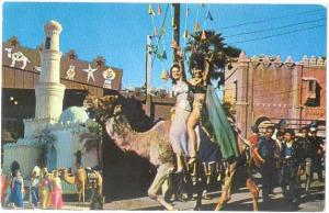 National Date Festival, Ladies on a Camel, Indio, California, CA, Chrome