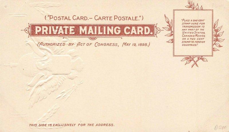 Washington DC The Smithsonian Institution Embossed Raphael Tuck Postcard