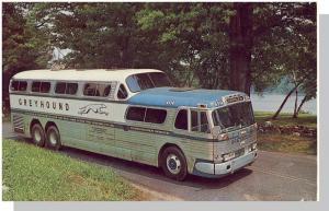 Striking Greyhound Bus Postcard, Greyhound Bus Line/1964