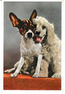 postcard dogs CLOSE FRIENDS Royle Publications PC.221