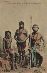 dutch guyana, SURINAME, Galibi Indians in Albina at the Marowyne  (1910s)