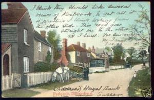 sussex, BILLINGHURST, Parbrook (1906) Horse Cart