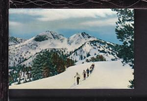 Skiing,Anthony Lakes,OR Postcard