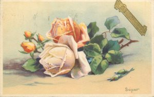 Postcard Greetings flowers rose
