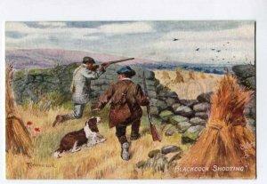 285384 HUNT Hunter ENGLISH SETTER Blackcock Shooting DRUMMOND Vintage TUCK