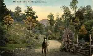 MA - Northampton. On the Road