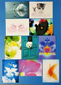 Set of 10 NEW Mixed Postcards great for Postcrossing & Postcardsofkindness set 2