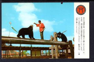 Hokkiado Bear,Japanese Village,Buena Park,CA