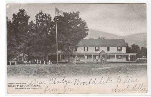 Willow Brook House Catskill Mountains New York 1906 postcard
