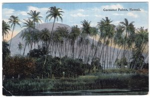 Hawaii, Cocoanut Palms