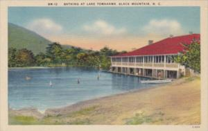 North Carolina Black Mountain Bathing At Lake Tomahawk