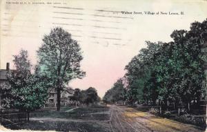 Walnut Street, Village Of NEW LENOX, Illinois, PU-1910