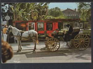 Sightseeing Carriage,French Quarter,New Orleans BIN