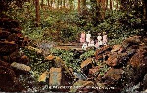 Pennsylvania Mount Pocono A Favorite Spot 1912