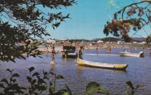 Dans la ville de Chibougamau, La Plage Municipale, Le Lac Gilman, Province de...