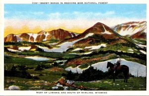 Wyoming Snowy Range In Medicine Bow National Forest