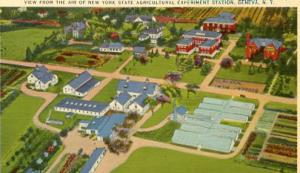 NY - Geneva, Aerial View of NY State Agricultural Experiment Station