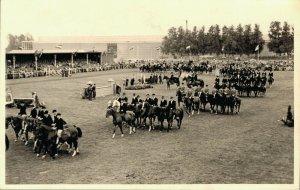 Horse Sports Hippique Concours Real Photo 03.98