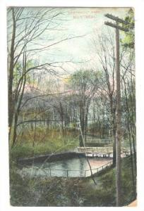 Scenic view, Westmount Park,  Montreal, Quebec,  Canada, PU-1907