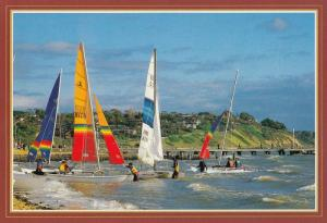 Frankston Australia Boat Race Large Postcard