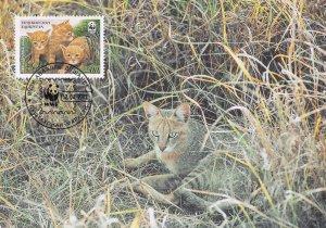 Reed Cat Tajikistan WWF Ltd Edn Stamp First Day Cover Postcard
