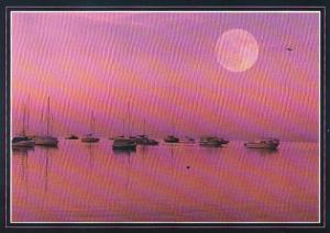 Florida Sunset Over The Marina