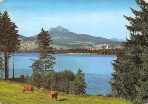 Germany Gruntensee im Allgau Blick zum Grunten Lake