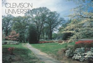 CLEMSON, South Carolina, 1950-1970's; Campus Scene At Clemson University