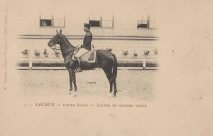 Saumer Haute Ecole Antique Horse Military Rider French Postcard