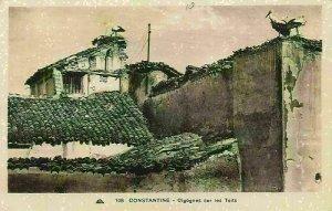 Algeria Constantine Cigognes sur les Toits Storks on the Rooftops Postcard