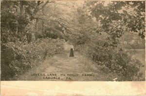 Carlisle Pennsylvania Lovers Lane Mr. Holly Park   - A18