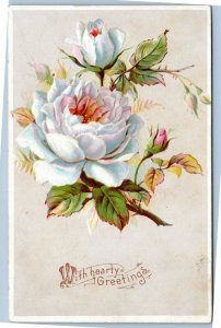 With Hearty Greetings - White roses postcard