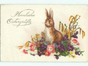 foreign 1910 Postcard EASTER BUNNY IN THE FLOWER PATCH AC3591
