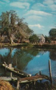 Mississippi Scene Along The Bayou