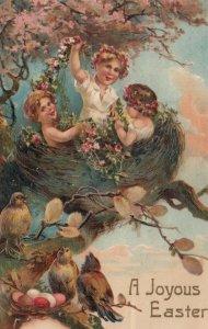 EASTER ; Kids in a birds nest, birds, eggs , 1909 ; PFB 8294