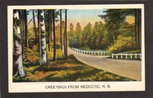 NB Greetings from MEDUCTIC NEW BRUNSWICK Canada PC